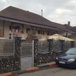 Casa Leo,  Haţeg