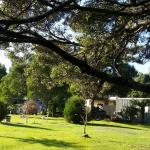 Zdjęcia hotelu: Zeehan Bush Camp and Caravan Park, Zeehan