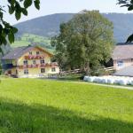 ホテル写真: Huberhof im Almenland, Sankt Kathrein am Offenegg