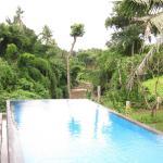 Villa Mawang, Ubud