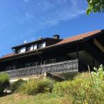Hotel Pictures: Landhausvilla Strittberg 7, Höchenschwand