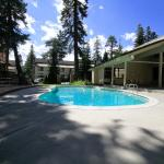 Mammoth Mountain Reservations Pet Friendly condos, Mammoth Lakes