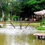 Hotel Pictures: Sitio Dona Alzira, Poços de Caldas