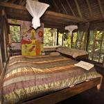 Hotel Pictures: Serere Eco Reserve, Rurrenabaque