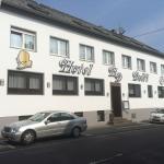Hotel Pictures: Dolfi Hotel & Restaurant, Sulzbach