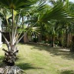 Nova Homestay, Sitiawan
