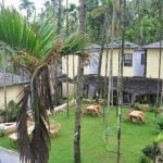 Shree Ganesh Beach Resort,  Diveagar