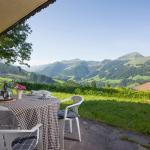Hotelbilleder: KitzBirds, Kirchberg in Tirol