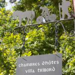 Hotel Pictures: Villa Tribord, Lacanau