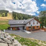 Hotel Pictures: Chata pod Lysou, Malenovice