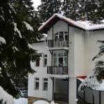 酒店图片: Villa Elena, 波罗维茨