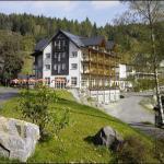 Land- und Kurhotel Tommes, Schmallenberg