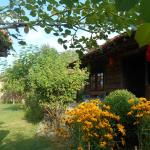 Fotos de l'hotel: Sunbeam Holiday Home, Zheravna
