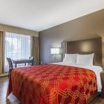 Hotel Pictures: Econo Lodge Inn and Suites Lethbridge, Lethbridge
