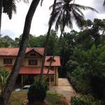 Palm lodge,  Kandy