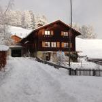 Hotel Pictures: Chalet Nidus Montis, Wergenstein