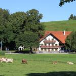 Hotel Pictures: Gasthof Lamprecht, Peiting