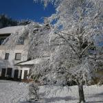Hotellikuvia: Haus Elisabeth, Hermagor