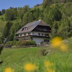 Hotellikuvia: Gästehaus Bischof, Schöder