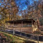 Kountry Kabin Home,  Maple Springs