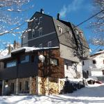 ホテル写真: Apartments Artic, Jahorina