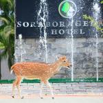 Sorabora Gedara Hotel, Mahiyangana