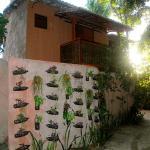 Casas Mirante, Pipa