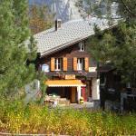 Hotel Pictures: Pension Gimmelwald, Gimmelwald