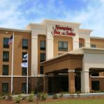 Hampton Inn and Suites Savannah-Airport,  Savannah