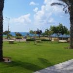 my home 2, Haifa