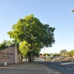 Villa Bane,  Bloemfontein