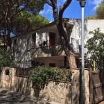 Apartamentos Piscis, Platja  dAro