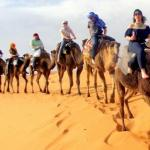 Merzouga Cameltrekking Bivouac, Merzouga