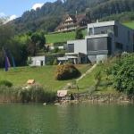 Hotel Pictures: Villa am See mit einzigartigem Ausblick, Sarnen