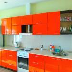 Lenina 151b Apartment, Barnaul