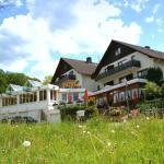 Hotel Pictures: Landhotel Püster, Allagen