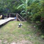 Фотографии отеля: Aracataca - la casita del tigre, Dique Luján