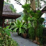 Phang-Nga Inn Guesthouse,  Phangnga