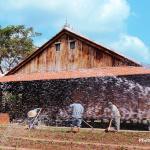 Hoa An Village Homestay, Cao Lãnh