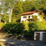 Hotel Pictures: Haus Waldfee, Schonach