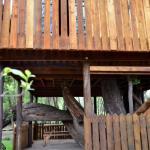 Willow Nest Treehouse Riversands,  Fourways