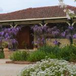 Greentrees Guest House, Orange