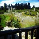 Fotos do Hotel: Hosteria Las Pitras, Epuyén