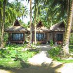 Surfing Carabao Beach Houses, General Luna