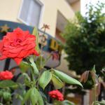 Eco-Hotel Edy, Chianciano Terme