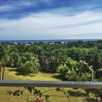 Avarua Heights, Rarotonga