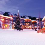 Hotel Pictures: Stellar's Rest at Vance Creek Hotel, Silver Star