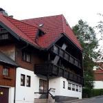 Hotel Pictures: Ferienwohnung Karin, Schonach