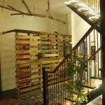 Gecko Republic Jungle Hostel, Ko Tao