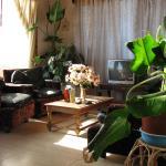 Hotel Pictures: Casas La Tunina Pichidangui, Pichidangui